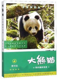 大熊猫 我的秦岭邻居