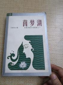 茵梦湖  外国抒情小说选集之一  1982年一版一印