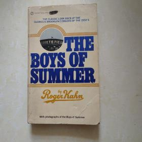 The Boys of Summer 英文原版  棒球
