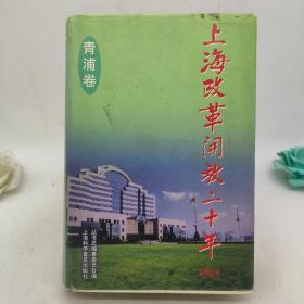上海改革开放二十年:系列丛书.青浦卷