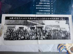 老照片 中国城镇供水协会安徽分会1989年年会全体代表留影