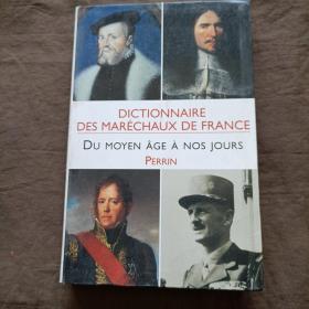 DICTIONNAIRE  DES MARÉCHAUX DE FRANCE法国马雷肖词典 DU MOYEN ÂGE À NOS JOURS从中世纪到现在