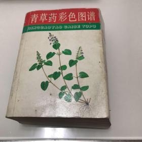 青草药彩色图谱