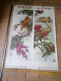 年画珍禽异卉