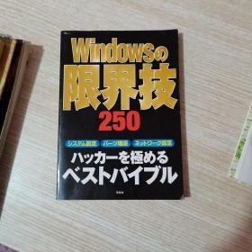 WINDOWS的限界技250【日文】
