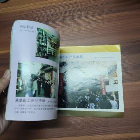 越秀星光--广州市越秀区个体经济剪影-图册-横16开