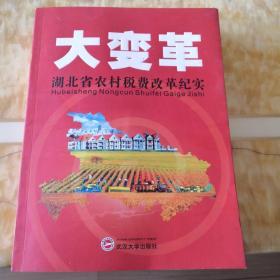 大变革  湖北省农村税费改革纪实