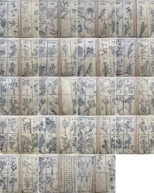 清代经典园艺古籍《花镜》研究如何养花的书(很多插图)