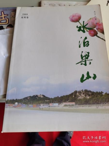 水泊梁山(2008夏荷卷)【车库中】1-2(9东)
