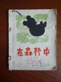 在森林中(五六十年代少儿老版本/黄永玉精美插图)