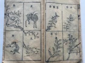 清代经典园艺古籍《花镜》(有很多插图)