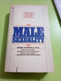 英文原版 Male Sexuality