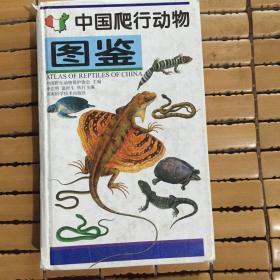中国爬行动物图鉴