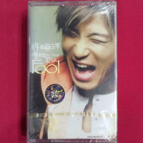 许绍洋傻的可以 磁带CD