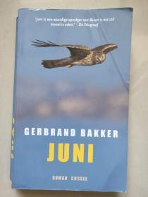 JUNI 荷兰语原版