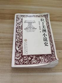 拉丁美洲小说史