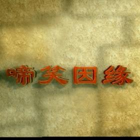 原盘电视剧2004啼笑因缘袁立 台版 38集9DVD9+1DVD5碟片光盘