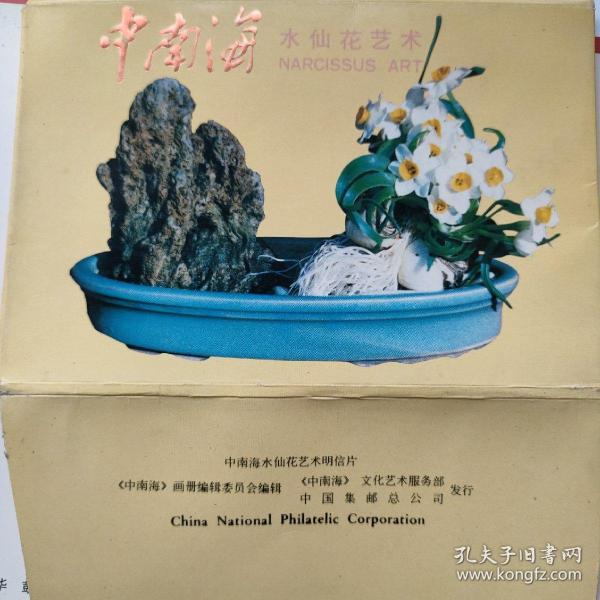 中南海_水仙花艺术(卡片9张)