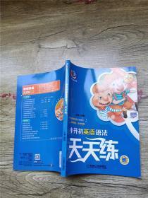 聪明英语·天天练系列:小升初英语语法天天练(第3版)