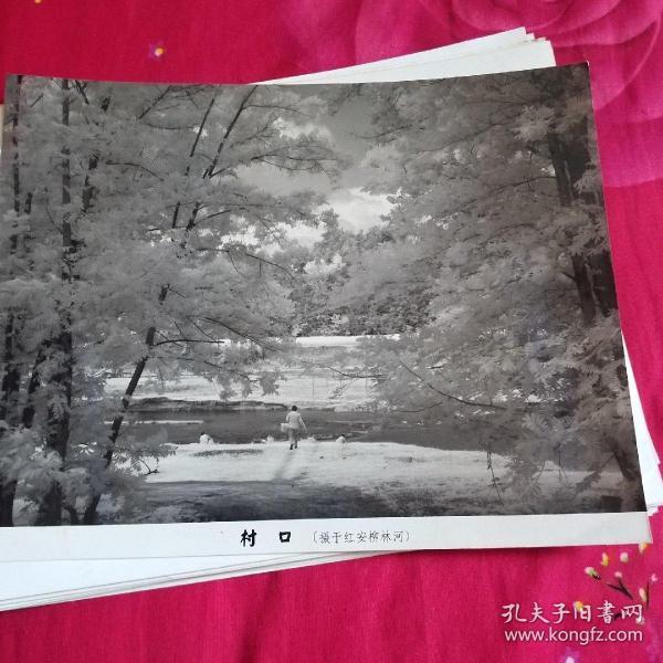 中国黄冈风情大别山全国摄影大展参赛入选作品原照片《村口》