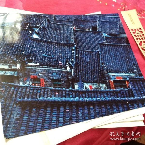 中国黄冈风情大别山全国摄影大展参赛入选作品原照片《春去春又回》