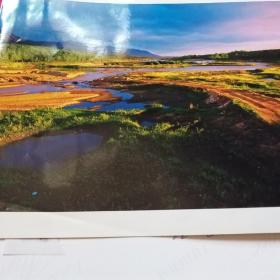 中国黄冈风情大别山全国摄影大展参赛入选作品原照片《金色的梦》