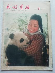 民族画报》1964.3