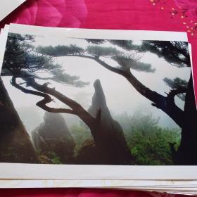 中国黄冈风情大别山全国摄影大展参赛入选作品原照片《送子观音》