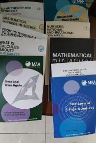 美国新数学丛书英文版全套(10本)