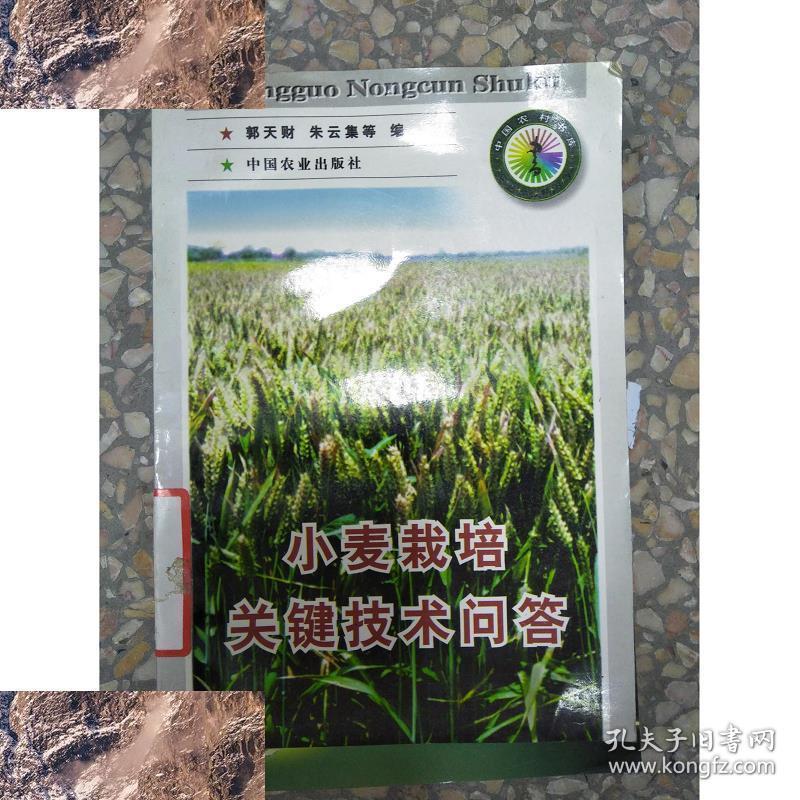 【!现货】特价~特价!小麦栽培关键技术问答9787109049338郭天财