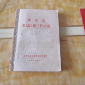 共青团基层组织工作手册