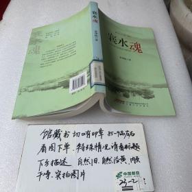 襄河乡土小说系列:襄水魂
