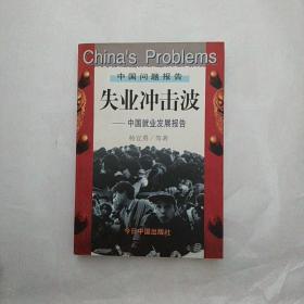 失业冲击波:中国就业发展报告