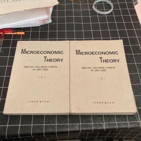 Microeconomic Theory微观经济理论  上下册