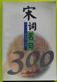 宋词名句300