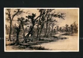 国画大师 黄君璧签名照片,民国画作《秋林夕照》投稿照片,大尺寸,民国原版老照片