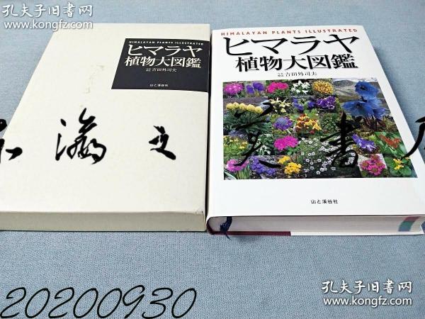 喜马拉雅植物大图鉴 2005年 16开 799页 吉田外司夫 山与渓谷社 日文