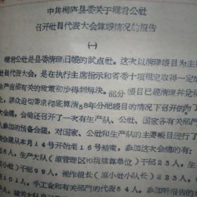 一九五九年中共桐庐县委关于桐君公社召开社员代表大会算账情况的报告