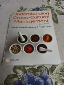 Understanding Cross-Cultural Management.