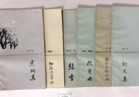 黎明散文诗丛第二辑 六本合拍:捡到的纪念册、细流与暮雨、流星雨、绿雪、灯火集、光斑集
