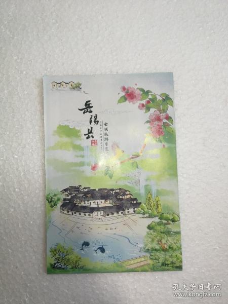 湖南—岳阳县全域旅游手绘地图