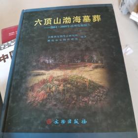 六顶山渤海墓葬:2004-2009年清理发掘报告