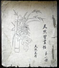 天然习画帖 第一册 天然花卉