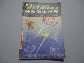 神奇的电世界(少年百科丛书)