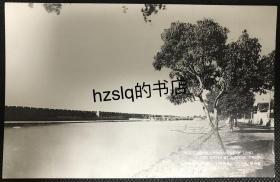 【影像资料】民国苏州段京杭运河旁苏州城城墙及周边风貌明信片,内容宽广、颇为难得