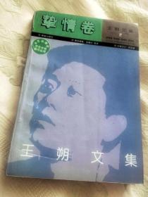 王朔文集2 挚情卷(1994第4版4印)