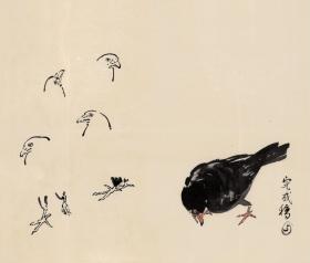 徐悲鸿 画稿 鸟  折页装   共13 幅