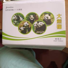 大熊猫明信片封套明信片1枚(实寄片)