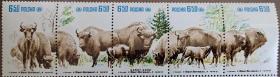 波兰邮票1981年-野生保护动物.欧洲野牛群5全连齿折
