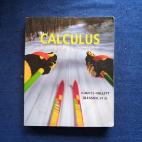 CALCULUS Second Edition微积分 第二版